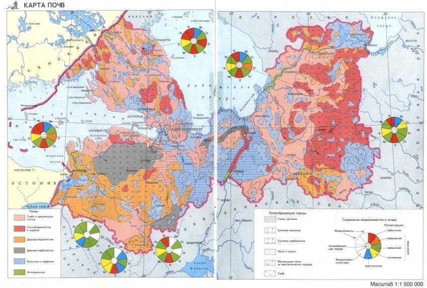 Карта почв Ленинградской области